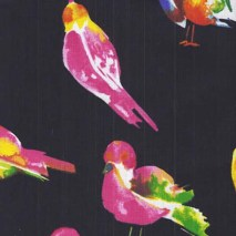 colourful birds - 150 cm wide