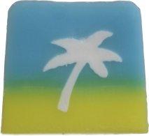 palm tree - coconut