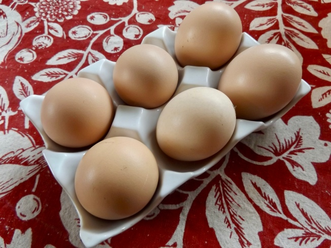 6 buff/speckled sussex eggs – Version 2